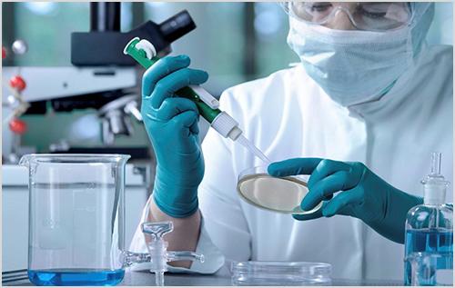 Bạn có biết đâu là địa chỉ xét nghiệm Bệnh Mycoplasma ở Gò Vấp?